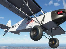 PC Flight Simulator Game